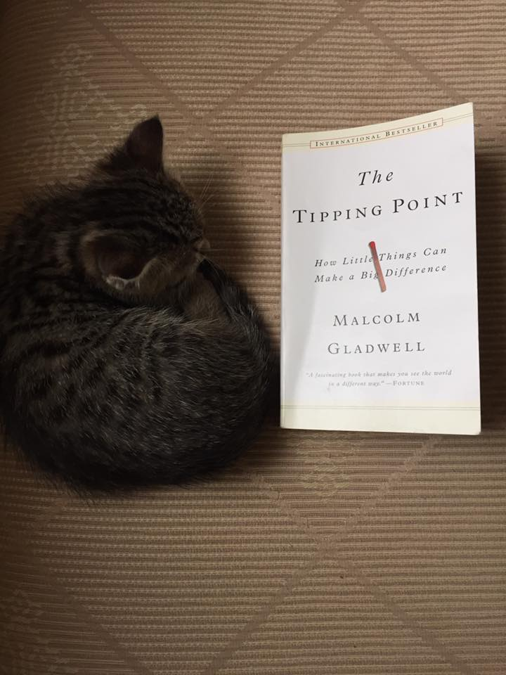 "maven connectors and salesmen in the tipping point a book by malcolm gladwell 114 quotes from the tipping point: ""a book, i was taught long the cure for immunity is finding mavens, connectors, and salesmen"" ― malcolm gladwell."